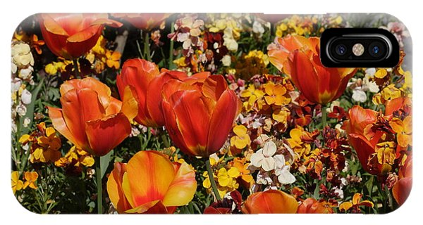 Field Of Tulips Phone Case by Pierre Leclerc Photography