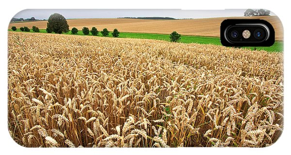 Agriculture iPhone Case - Field Of Wheat by Nailia Schwarz