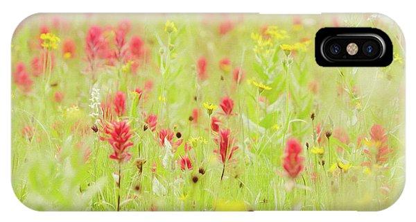 Indian Peaks Wilderness iPhone Case - Field Of Wildflowers by Margaret Goodwin