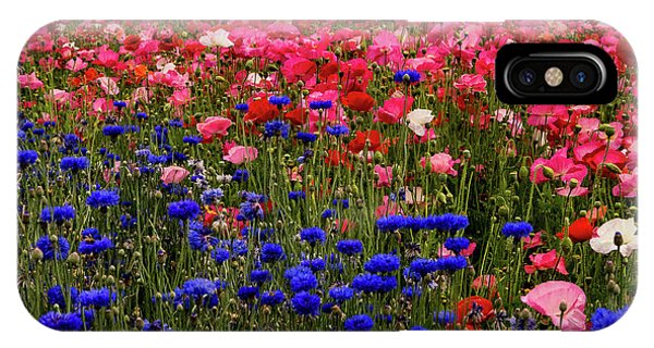 Fields Of Flowers IPhone Case