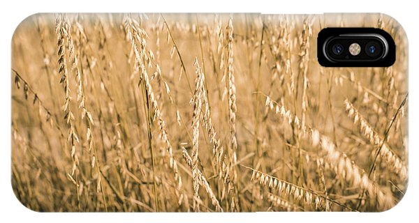 IPhone Case featuring the photograph Fields Of Gold by Allin Sorenson