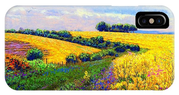 Oklahoma iPhone Case - Fields Of Gold by Jane Small