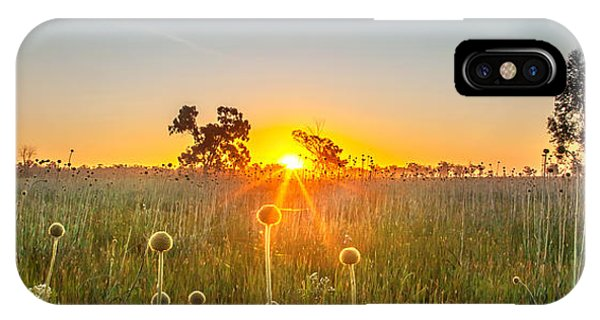 Fields Of Gold Panorama IPhone Case
