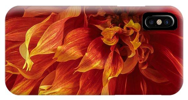 Fiery Dahlia IPhone Case