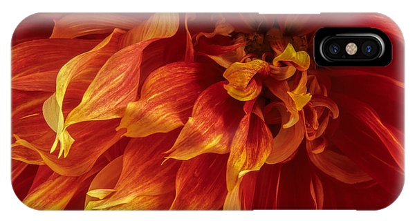 Fiery Dahlia IPhone Case