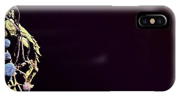 fig IPhone Case