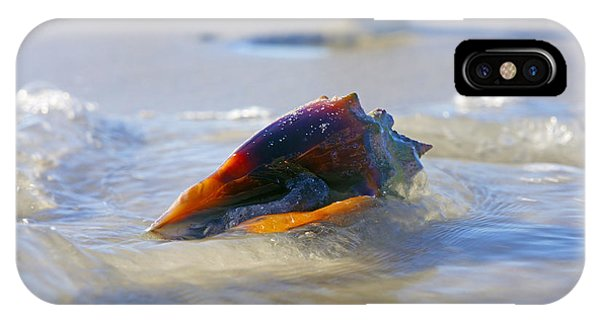 Fighting Conch On Beach IPhone Case