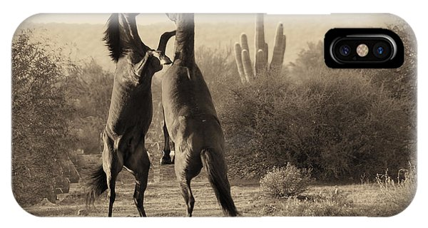 Fighting Stallions IPhone Case