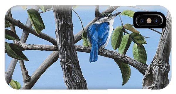 Kingfisher iPhone Case - Filipino Kingfisher by Wendy Ballentyne