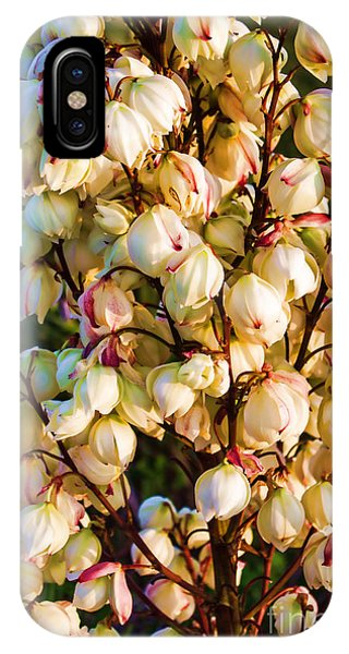 Filled With Joy Floral Bunch IPhone Case
