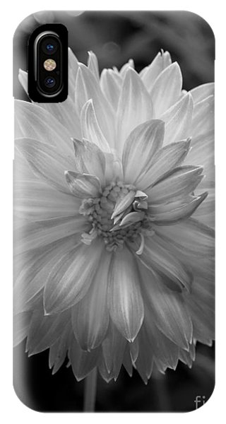 Filter Series 100 IPhone Case