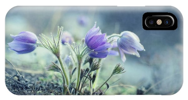 Finally Spring IPhone Case