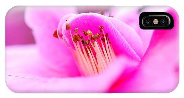 Fine Art- Pink Camellia IPhone Case