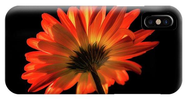 Fire Flower IPhone Case