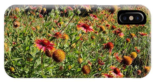 Firewheel Wildflower IPhone Case
