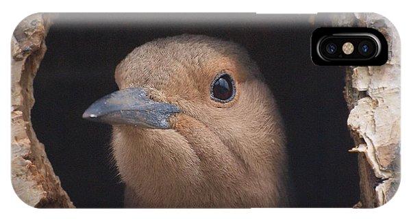 First Flight IPhone Case