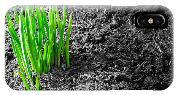 First Green Shoots Of Spring And Dirt IPhone Case