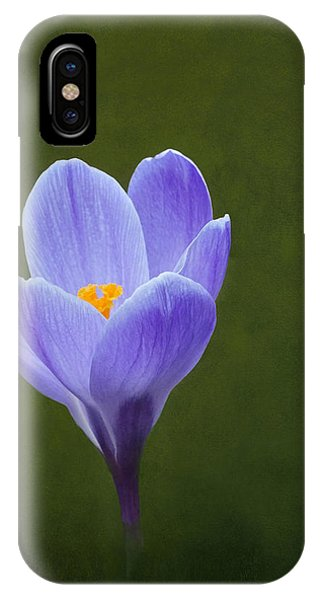 First Sign Of Spring IPhone Case