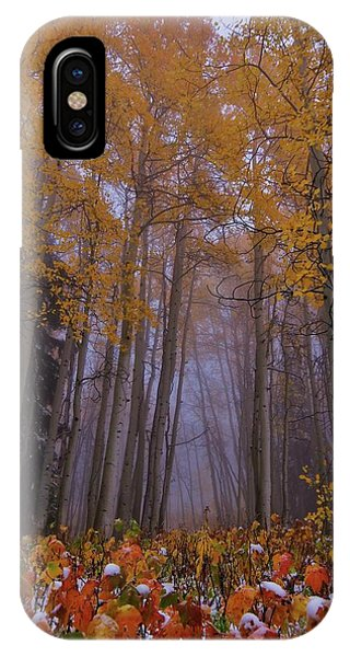 First Snow Fall IPhone Case