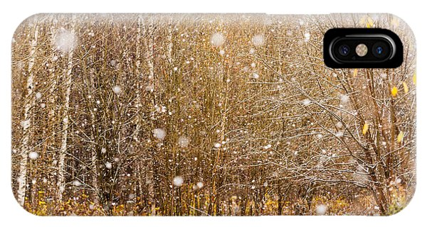 First Snow. Snow Flakes I IPhone Case