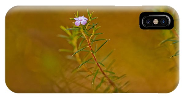 Nsw iPhone Case - First To Flower by Az Jackson