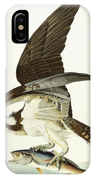Osprey iPhone Case - Fish Hawk by John James Audubon