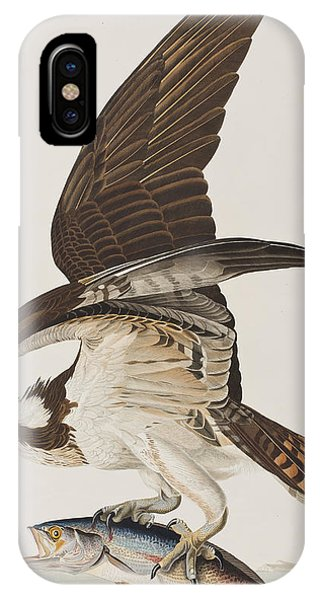 Osprey iPhone Case - Fish Hawk Or Osprey by John James Audubon