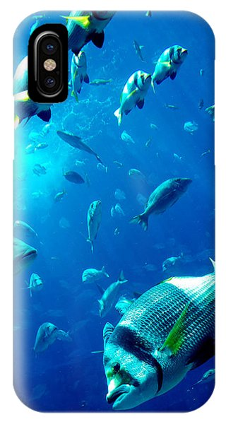 Fishes Phone Case by Leena Kewlani