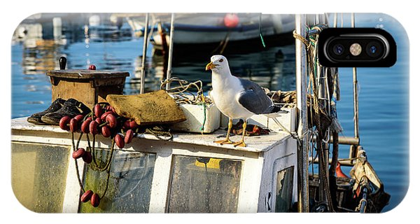 Fishing Boat Captain Seagull - Rovinj, Croatia IPhone Case