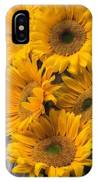 Five Farm Grown Sunflowers IPhone Case