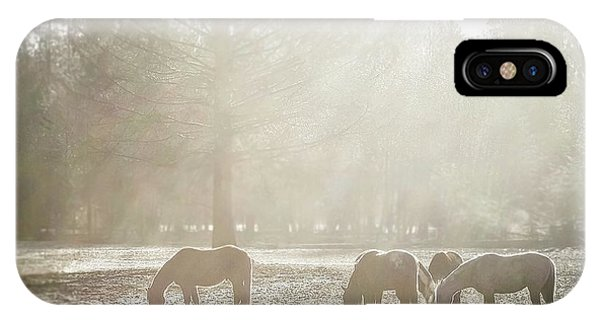 iPhone Case - Five Horses In The Mist by Bill Linn