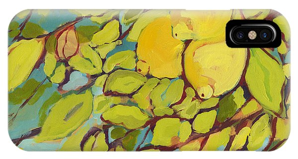 Fruit iPhone Case - Five Lemons by Jennifer Lommers