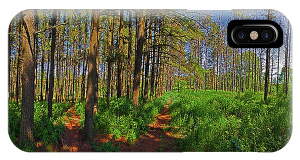Paths, Pines 360 IPhone Case