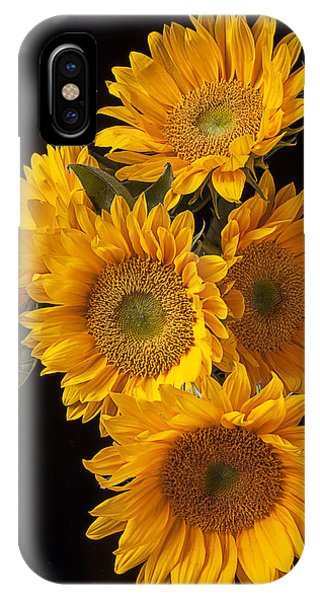 Golden iPhone Case - Five Sunflowers by Garry Gay