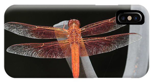 Flame Skimmer IPhone Case