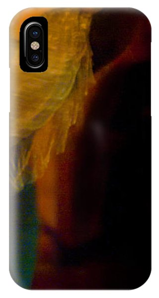 IPhone Case featuring the photograph Flamenco Series 23 by Catherine Sobredo