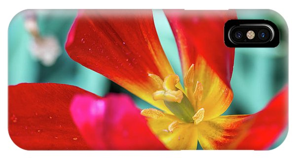 Flaming Tulip IPhone Case