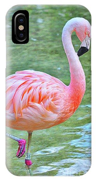 Flamingo 39 IPhone Case