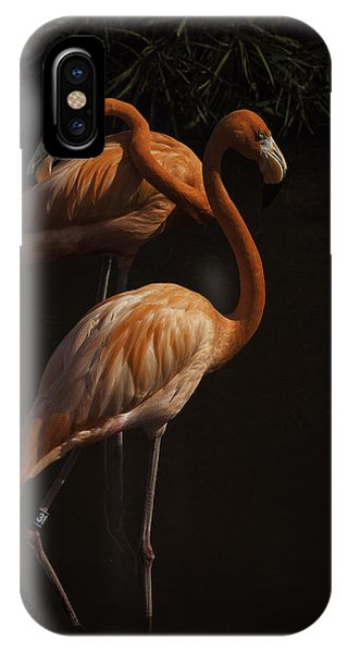 Flamingo Delight IPhone Case