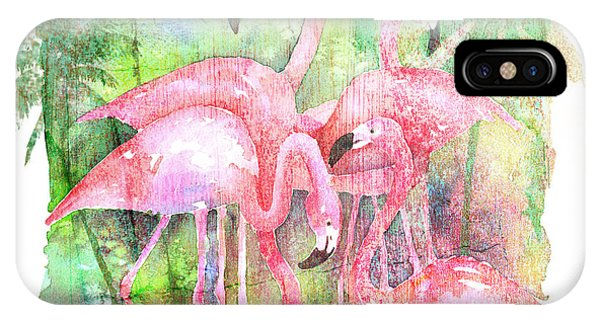 Flamingo Five IPhone Case