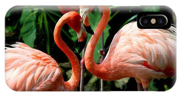 Flamingo Heart IPhone Case