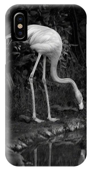 Flamingo Lake, Film Finish IPhone Case