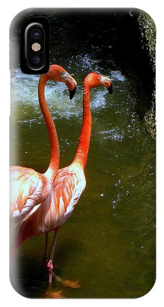 Flamingo Pair IPhone Case