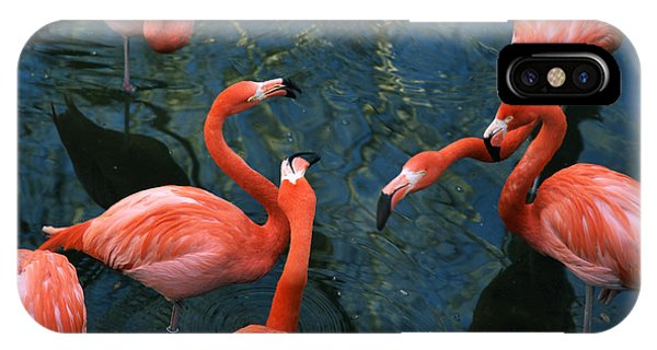Flamingo Party 1 IPhone Case
