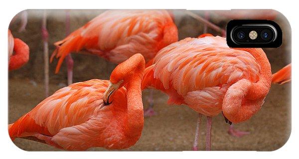 Flamingo Party Phone Case by Teresa Blanton