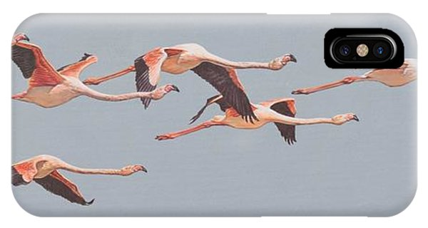 IPhone Case featuring the painting Flamingos In Flight by Alan M Hunt
