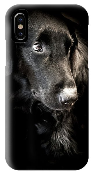 Flat Coated Retriever IPhone Case