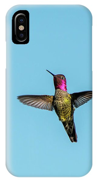 Flight Of A Hummingbird IPhone Case