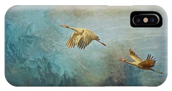 Flight Of Fantasy, Sandhill Cranes IPhone Case