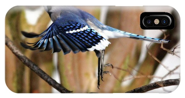 Flight Of The Blue Jay IPhone Case